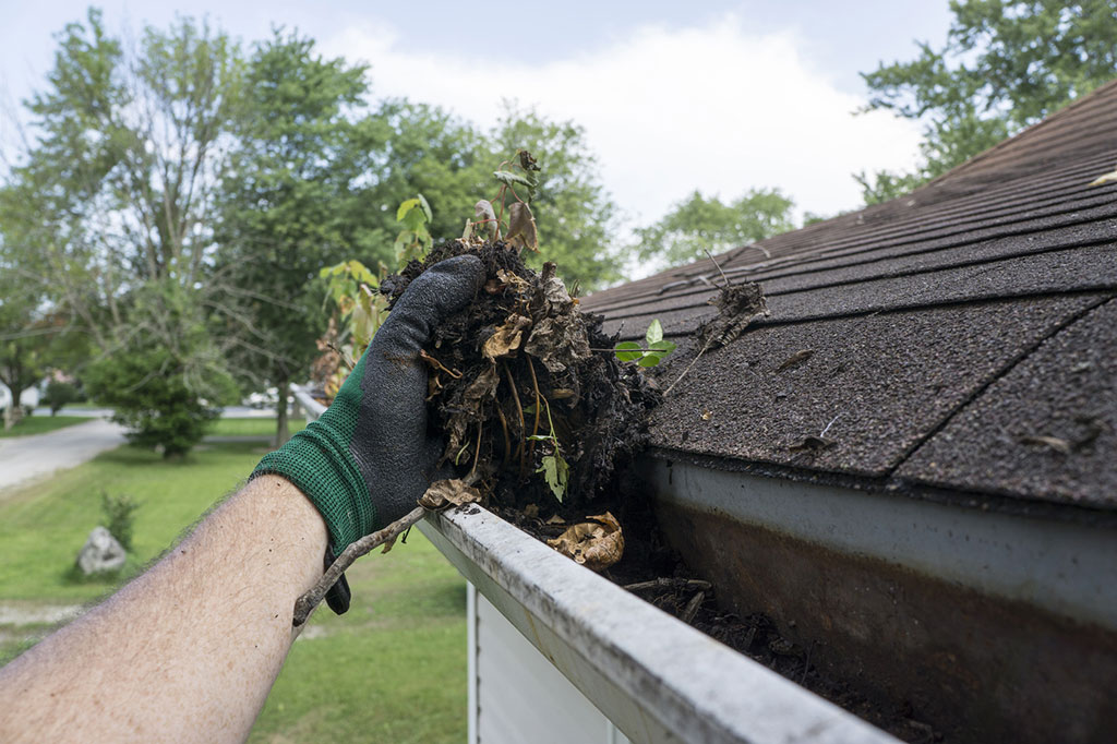 cleaning-gutters-filled-with-leaves-&-sticks